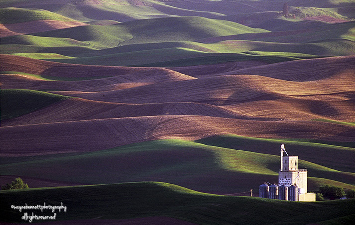 Palouse-Patterns-with-Silo-03